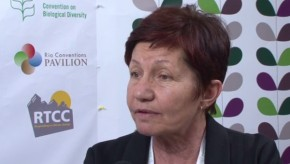 CBD COP11: Nature knows best in climate change adaptation