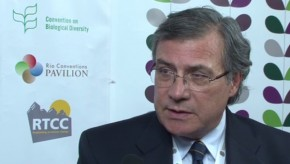CBD COP11: Links to 'neighbourhood' of conventions allows CBD progress