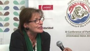 CBD COP11: Hard politics is needed to solve environment crises