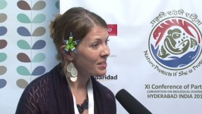 CBD COP11: Hawaii offers model of sustainability for rest of USA