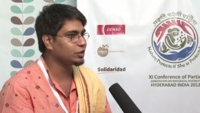 CBD COP11: UN process must be made more accessible to young people