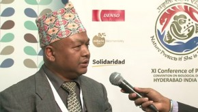 CBD COP11: Government and NGO collaboration is key to conservation