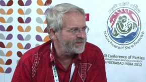 CBD COP11: CBD policies have not been implemented effectively