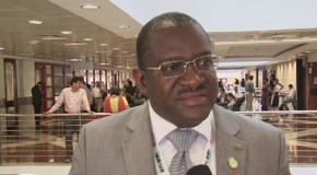 CBD COP11: Zambia going it alone on environmental projects