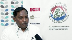 CBD COP11: Threats to biodiversity for Rajasthan State