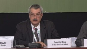 CBD COP11: Time for action on biodiversity, says CBD chief
