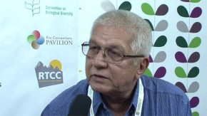 CBD COP11: Fighting climate change with smart agriculture