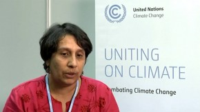COP18: All countries must do fair share to tackle global climate change