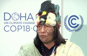 COP18: We must reconnect with nature to solve climate crisis