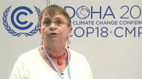 COP18: Annick Delhaye, Network of Regional Governments for Sustainability