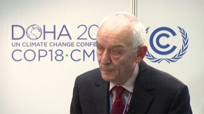 COP18: Biomass could contribute significantly to global energy