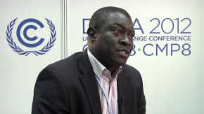 COP18: Climate proofing agriculture through agroforestry