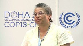 "COP18: Lack of climate finance ""shameful"""