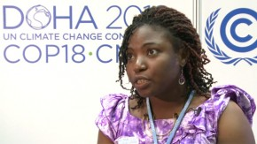 Cameroon youth outline climate goals in Doha