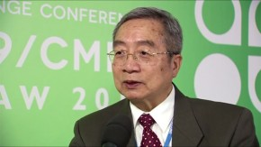 COP19: Dadi Zhiou on why China is doing its best to reduce energy consumption