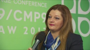 COP19: Dionysia-Theodora Avgerinopoulou, Member of Greek Parliament