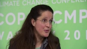 COP19: Linda Carton on finance and divestment