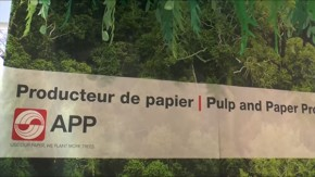 Michael Buur Traerup, APP