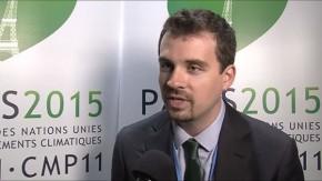 Brian Schaap, Forest Trade and Finance