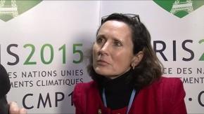 Sandrine Dixson-Decleve, University of Cambridge